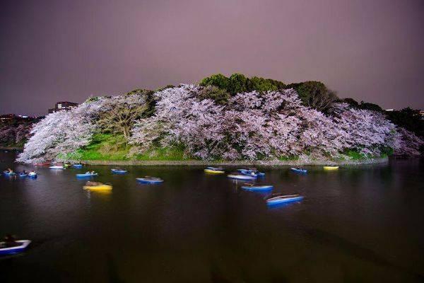 luksuz-turizam-odmor-destinacija-putovanje-japan (11)