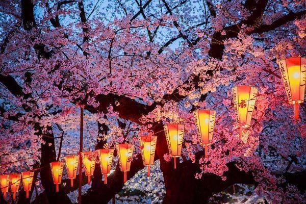 luksuz-turizam-odmor-destinacija-putovanje-japan (14)