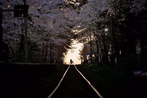 luksuz-turizam-odmor-destinacija-putovanje-japan (18)