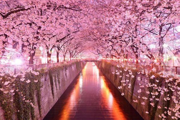 luksuz-turizam-odmor-destinacija-putovanje-japan-99