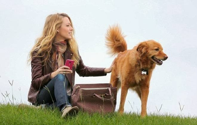 Blake Lively in the Park with Gucci Bag